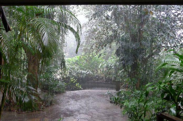 beautiful_photographs_of_rain_55