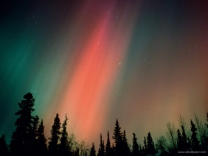aurora_borealis_northern_lights_alaska__1600x-800x600