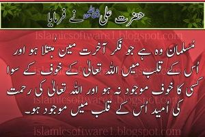 Hazrat-Ali-R.A-Aqwal-e-Zareen-5