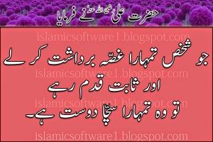 Hazrat-Ali-R.A-k-aqwal-3