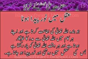 Hazrat-Ali-R.A-k-aqwal-6