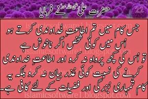 Hazrat-Ali-R.A-k-aqwal-8